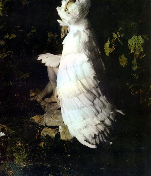 """The Swan Maiden,"" Courtesy of Caroline Blackburn"